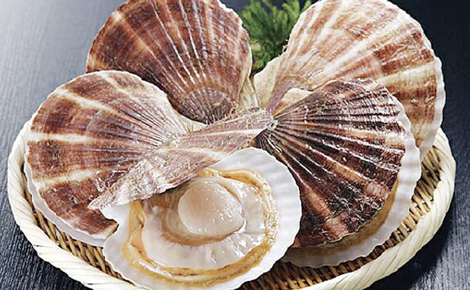 [Ka403-C075]【北海道から直送!!】殻付活ホタテ貝(9.0kg詰)30~45枚入