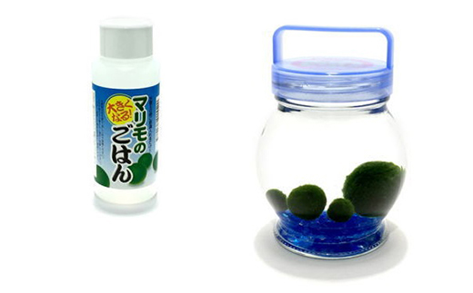 釧路福司 リキュールヨーグルトのお酒 「みなニコリ」720㎖と阿寒まりもセット