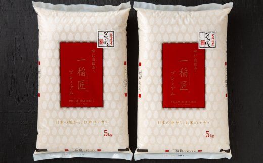 10-290 令和2年産 北海道産ななつぼし10kg(5kg×2袋) 【つきたてそのまま・低温精米】(ポリ袋)