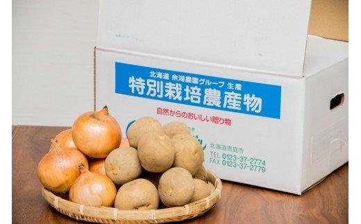 キタアカリ5kg、玉葱5kgセット【31007】