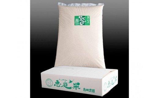 『定期便』北海道恵庭産 たつや自慢の米 ななつぼし10kg 全3回【35006】