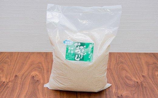 【無洗米】北海道恵庭産 たつや自慢の米 ななつぼし5kg【35002】