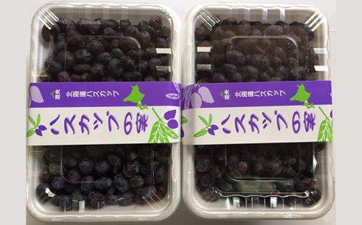 【令和3年産】ハスカップ冷凍果実500g×2【29004】