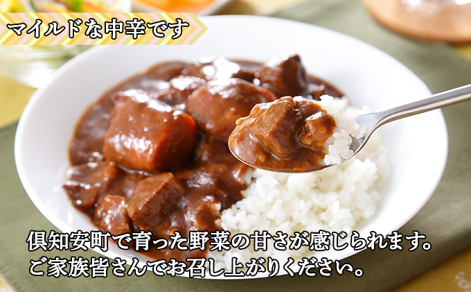 倶知安ビーフカレー 北海道 3個 中辛 レトルト食品 加工品 牛肉 野菜 じゃがいも お取り寄せ グルメ 倶知安町 保存食 スパイシー スパイス おかず