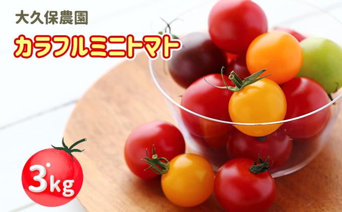 大久保農園の☆新鮮☆カラフルミニトマト詰合せ3kg