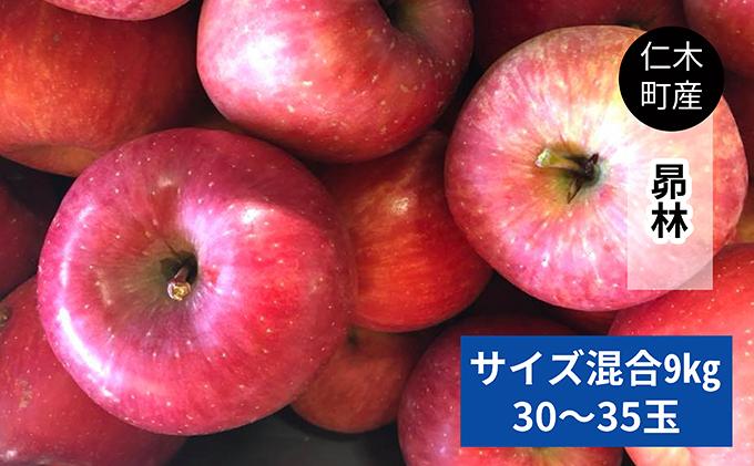 仁木町の採れたてりんご「昴林(こうりん)」9kg≪妹尾観光農園≫