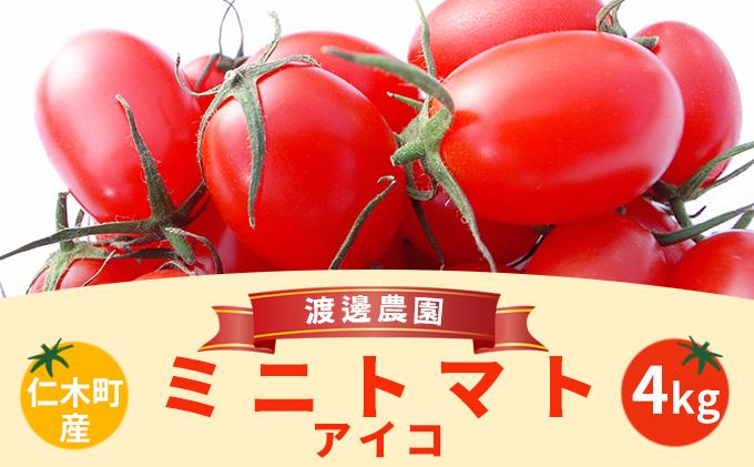 北海道仁木町産ミニトマト【アイコ】1kg×4箱