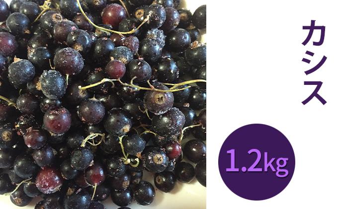 峠のふもと紅果園の冷凍カシス約1.2kg(600g×2)【ブラックカラント】