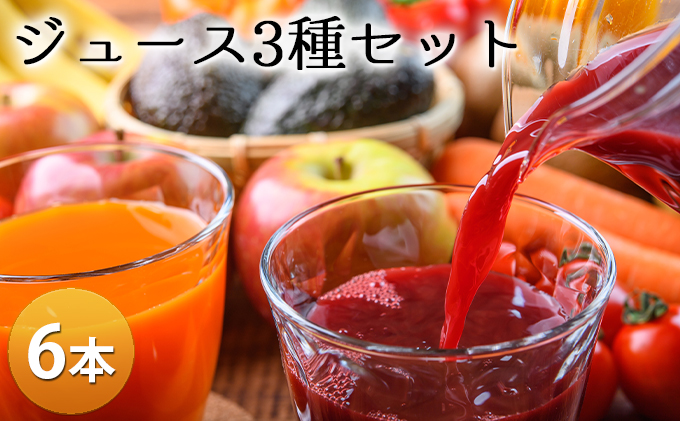 笠井園のジュース3種セット(計6本)