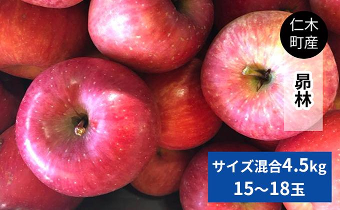 仁木町の採れたてりんご「昴林(こうりん)」4.5kg≪妹尾観光農園≫