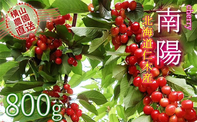 横山農園のさくらんぼ【南陽】800g(200g×4)