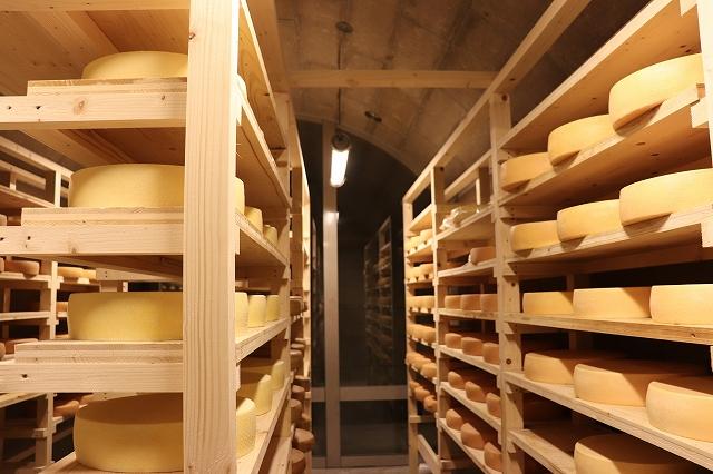 [030-53]ラクレットチーズ クオーターサイズ