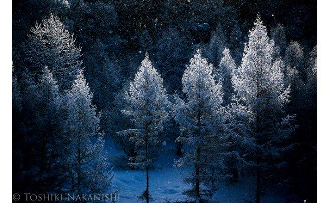 [150-08]写真家 中西敏貴 額付き写真「厳冬の美」(サイン入り)