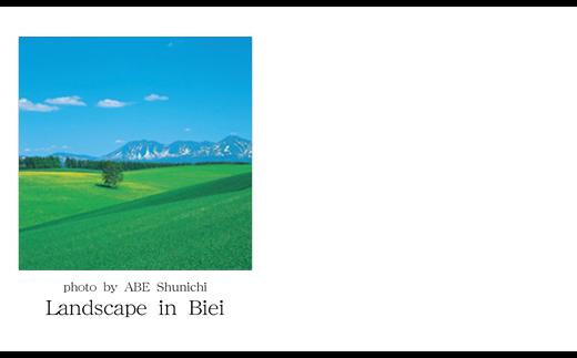 [005-05]写真家 阿部俊一 名刺台紙・メッセージカード100枚(A)