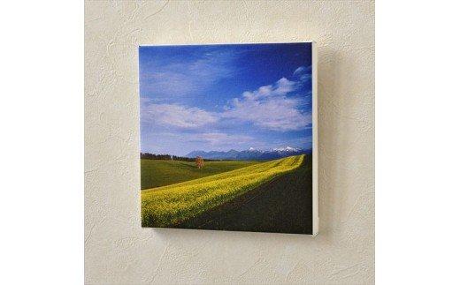 [020-23]写真家 阿部俊一 キャンバスプリント「初冠雪とキガラシ」