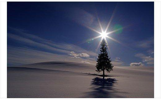 [030-38]写真家 阿部俊一 額付き写真「冬景色の光」