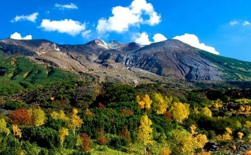 美瑛町の風景画像