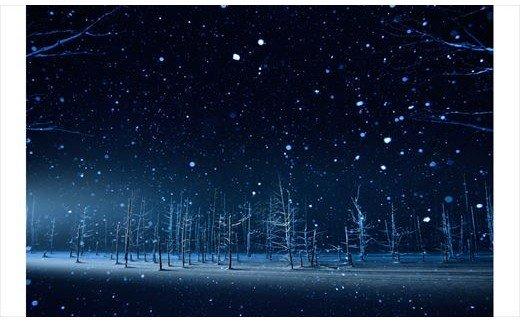 [100-33]写真家 阿部俊一 額付き写真「雪降る光景」