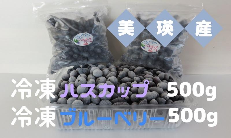 [011-19]美瑛産冷凍ハスカップ500g・冷凍ブルーベリー500g
