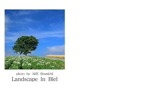 [005-06]写真家 阿部俊一 名刺台紙・メッセージカード100枚(B)