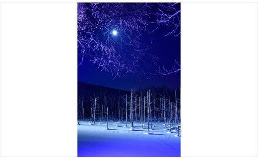 [030-39]写真家 阿部俊一 額付き写真「月光の輝き」