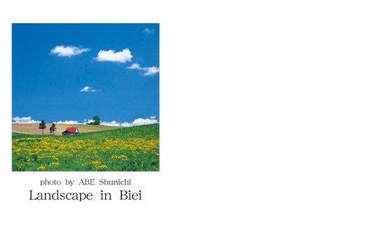 [005-07]写真家 阿部俊一 名刺台紙・メッセージカード100枚(C)