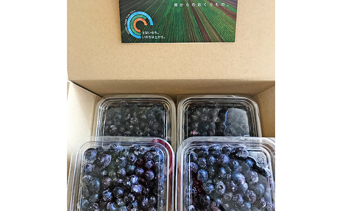 ジオの恵み・畑からのおくりもの ~[約1kg]摘みたて!フレッシュブルーベリー約250g×4パック~