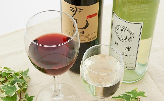 月浦ワイン2本セット(白・赤750ml)