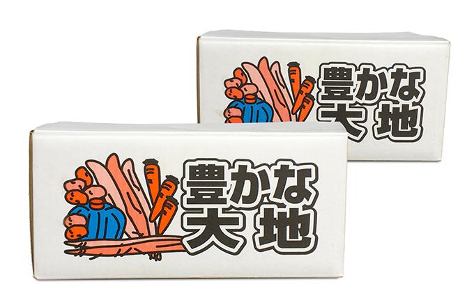 北海道洞爺湖町産 青野農園直送!旬の野菜2回お届け
