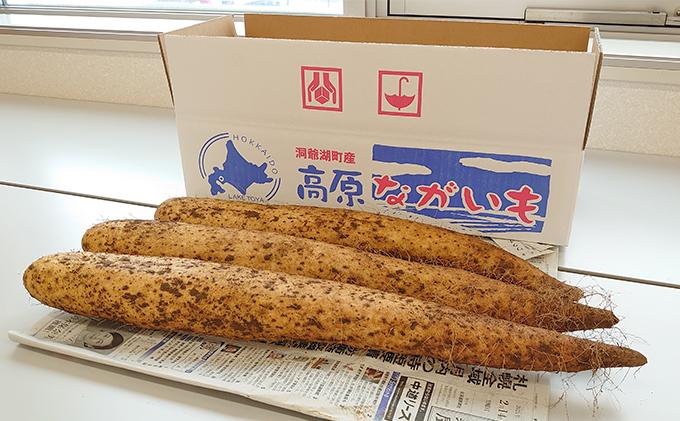 北海道洞爺湖町産 秋掘り長芋 約5kg