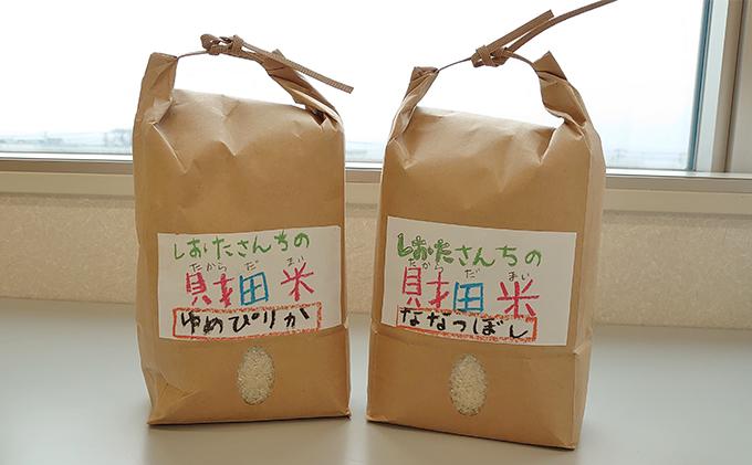 「とろろごはんセット 」お米(2品種各2kg)と長芋(約5kg) ※11月秋掘り長芋