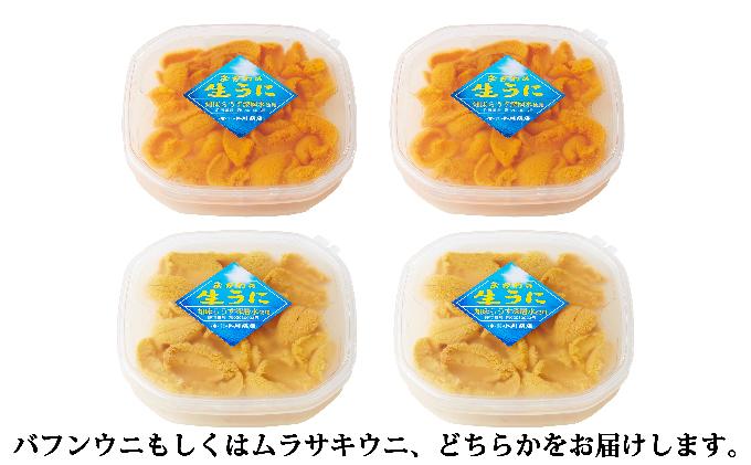 【配送日時・曜日指定不可】小川商店の無添加塩水ウニ100g×2パック
