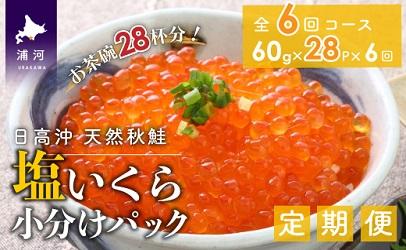 北海道日高産 塩いくら小分けパック(60g×28)【全6回定期便】[B15-976]