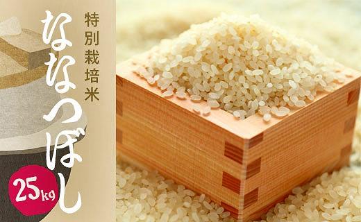 特別栽培米 アポイ米(ななつぼし)25kg
