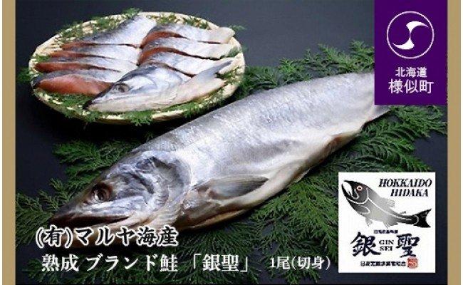【熟成】 ブランド鮭 「銀聖」 1尾(切身)
