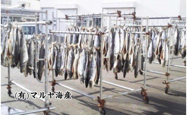 【熟成】 ブランド鮭 「銀聖」 半身切身