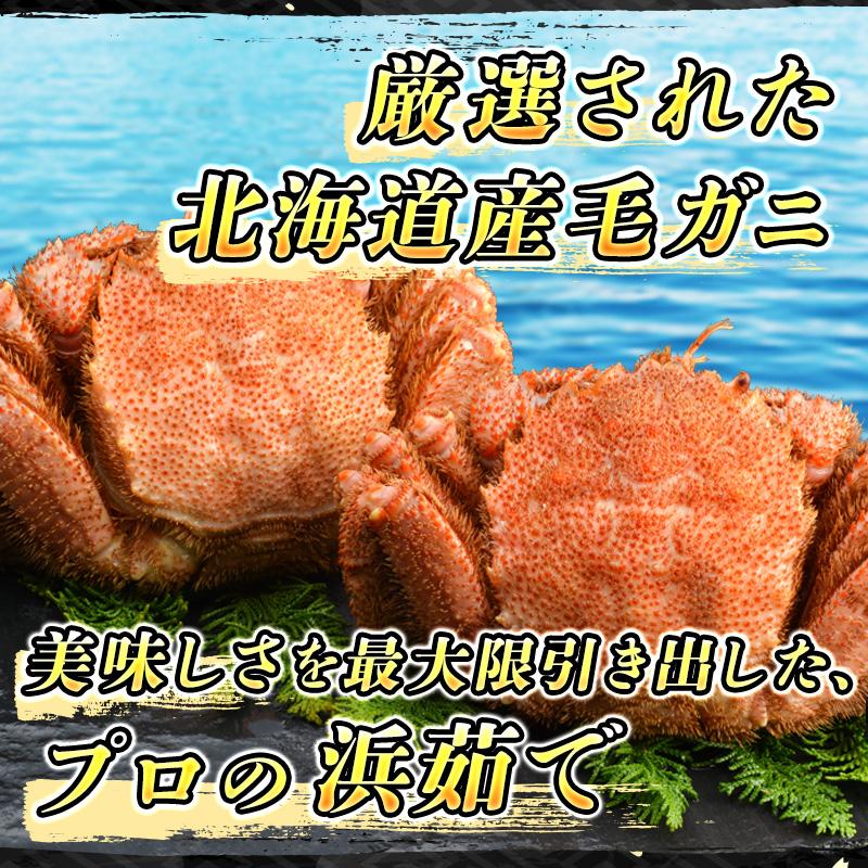 【北海道産】浜ゆで毛ガニ 1尾 (約700g)