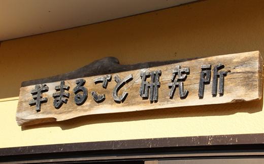 「ムートン」羊まるごと研究所・酒井さん製★数量限定