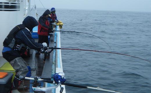 チャーター船での北海道といえば、秋鮭!イカ!の船釣り体験【12名様】
