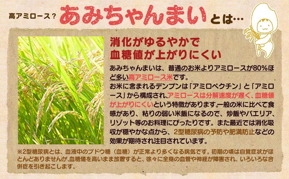 グルテンフリー!米粉で作ったもっちりシフォンケーキ ほうじ茶味(4〜6人分)