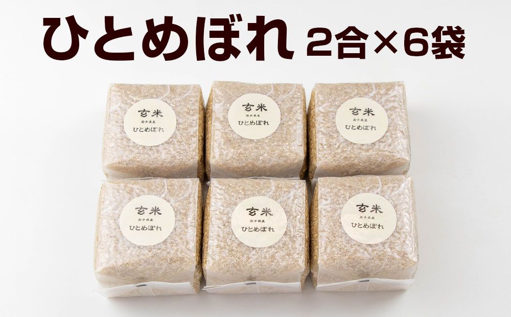 令和3年産 岩手県矢巾町「ひとめぼれ玄米」2合×6袋 キューブ米