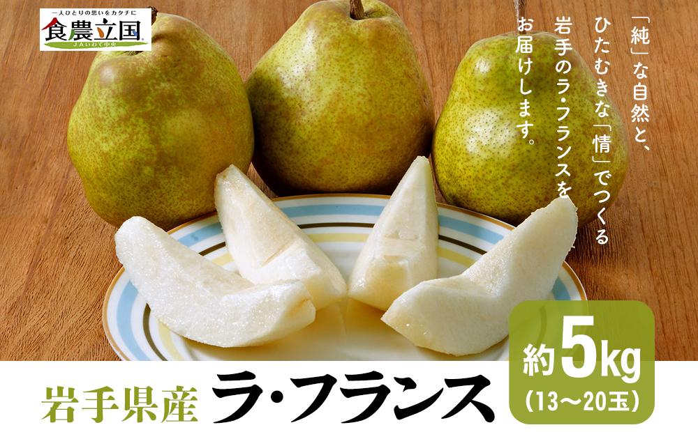 JAいわて中央の美味しい梨 ラ・フランス5kg(13玉~20玉)