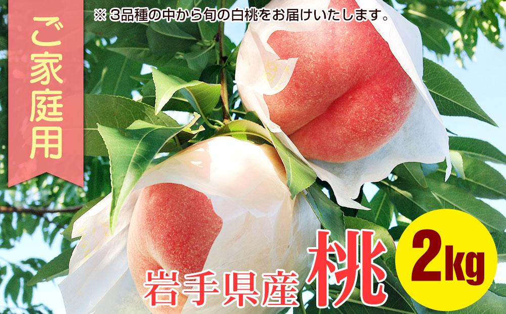 ふじむら農園のご家庭用白桃2kg
