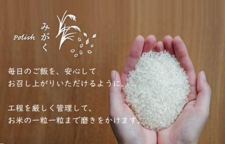 純情米いわて 金札米 岩手県産 ササニシキ 5kg