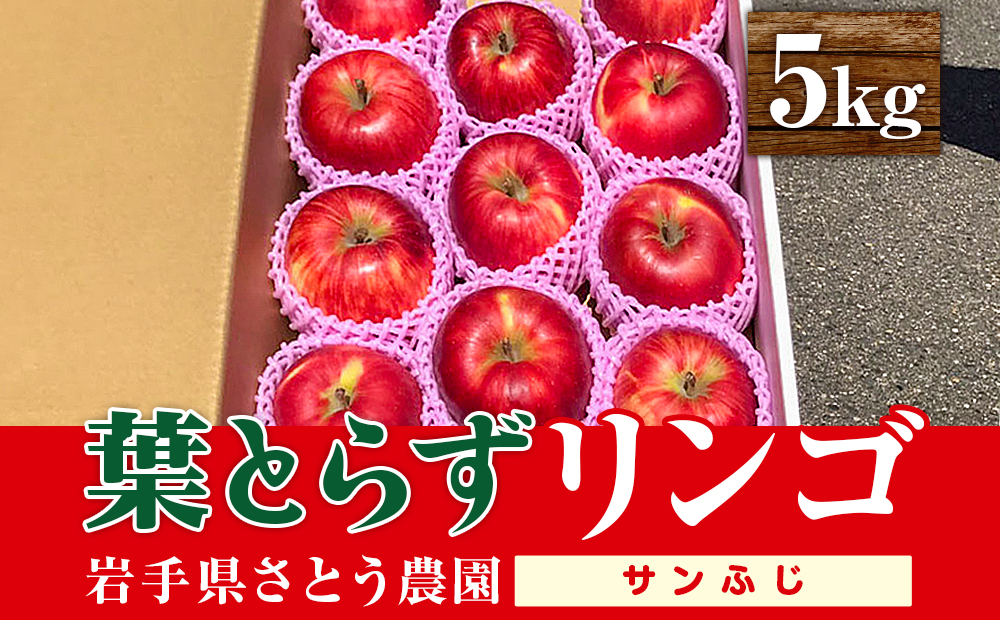 佐藤農園の葉とらずリンゴ (サンふじ) 5kg