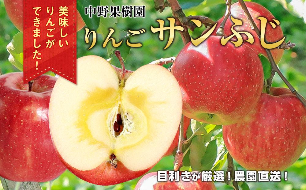 中野果樹園のサンふじ5kg(16〜20個入り)