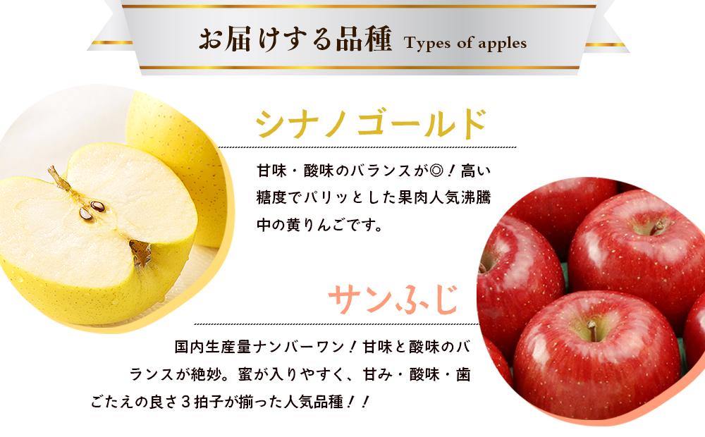 藤原農園のりんご2種の詰め合わせ『シナノゴールド・サンふじ』5kg