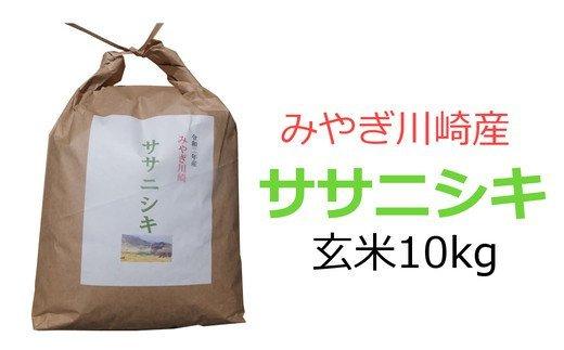 【04324-0121】みやぎ川崎産 ササニシキ 新米10kg(玄米)