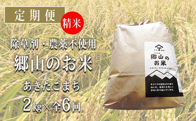 秋田県産あきたこまち(精米)郷山のお米2kg×6ヶ月定期便(6回 6ヵ月)