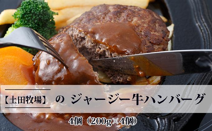 ジャージー牛たっぷり ハンバーグ 4個(200g×4個)